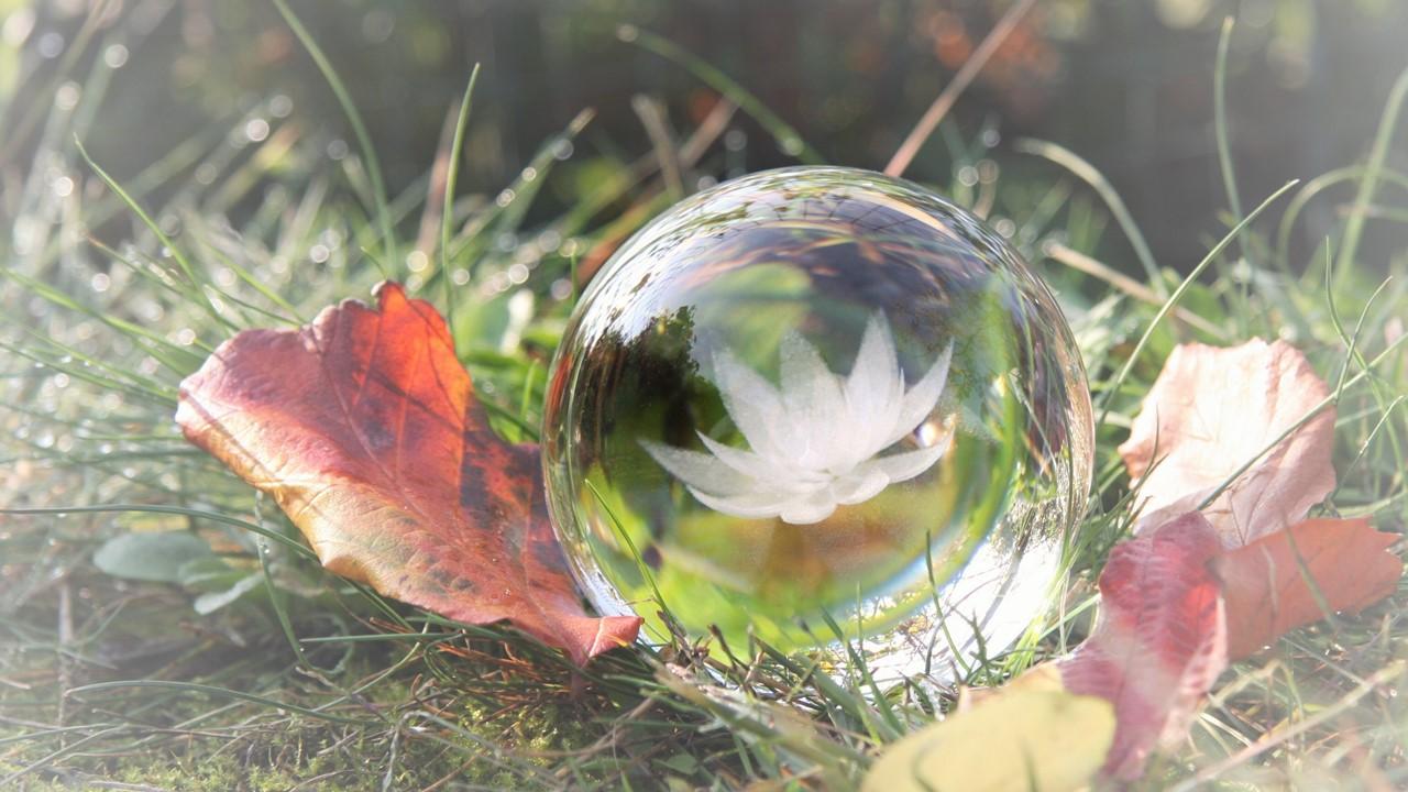 Herbst: Dankbarkeit und kleine Meditationsübung